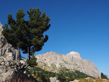 Passo Falzarego, Tofana De Rozes, Pass