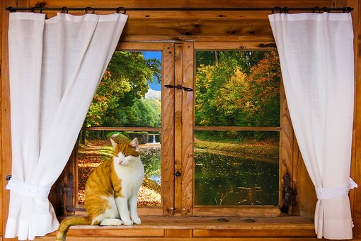 Landscape, Nature, Window, Outlook, Relaxation