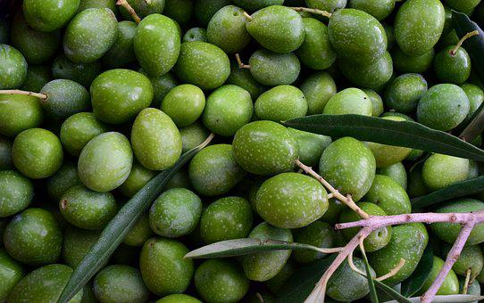 Olives, Green, Ripe, Ripe Olives, Frisch, About