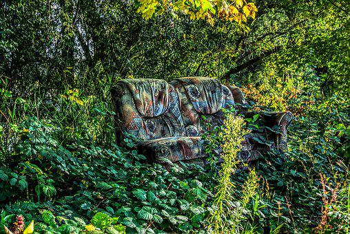 Sofa, Couch, In The Green, Forest, Sit, Relax