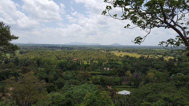 A Scenic View, Dutugemunu Forest Monastery, Vijithapura