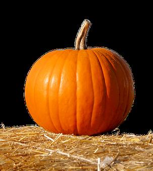 Pumpkin, Straw, Isolated, Fruit, Deco, Orange, Nature