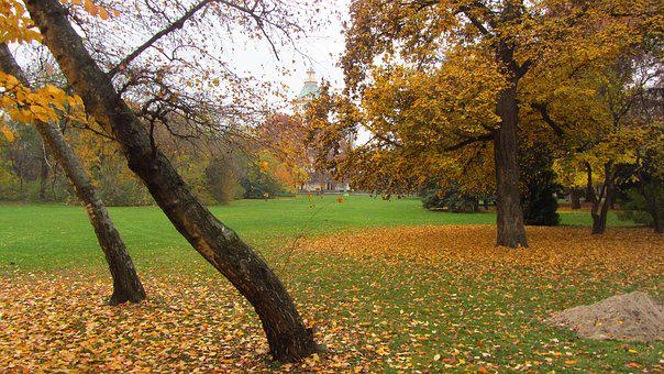 Budapest, Margaret Island, In The Fall