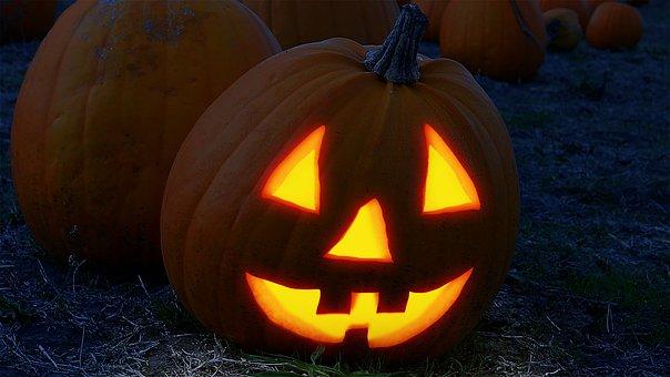 Pumpkin, Face, Halloween, Field, Orange, Fash