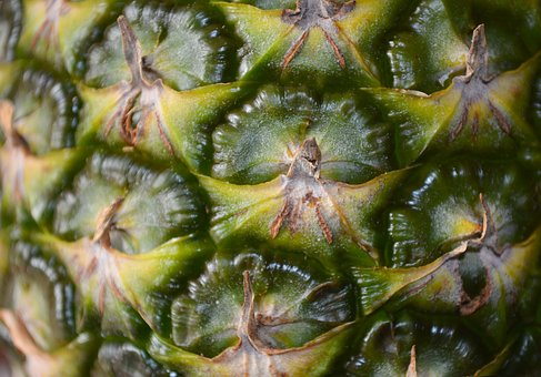 Pineapple, Skin, Fruit, Tropical, Food, Healthy, Fresh