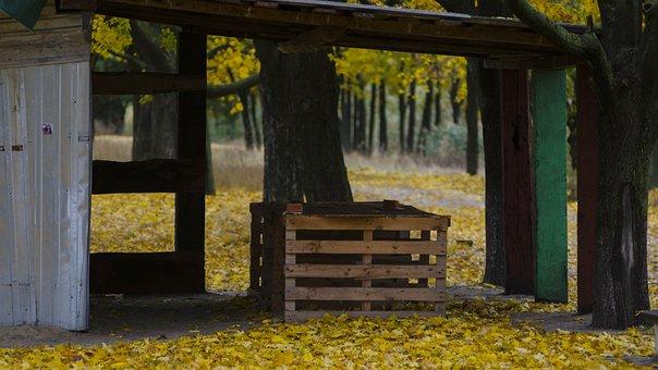 Canopy, Autumn, Foliage, Gazebo, Nature, Fallen Foliage