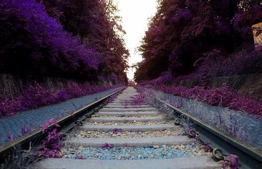 Arboretum, Railroad Tracks, Mont-hwan, Dreamlike