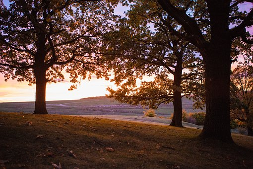 Sunset, Suceava, Travel, Sky, Nature, Mountain