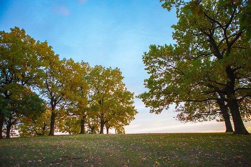 Sky, Romania, Landscape, Blue, Nature, Sightseeing
