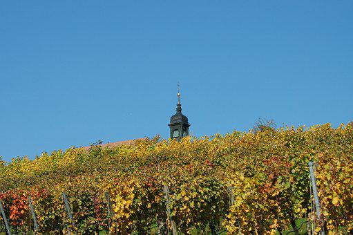 Chapel, Vineyard, Spire, Wine Region, Autumn