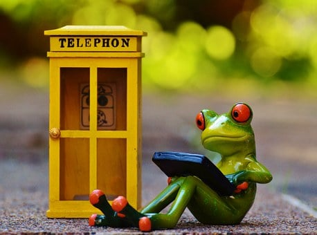 Frog, Phone Booth, Phone, Computer, Laptop, Email