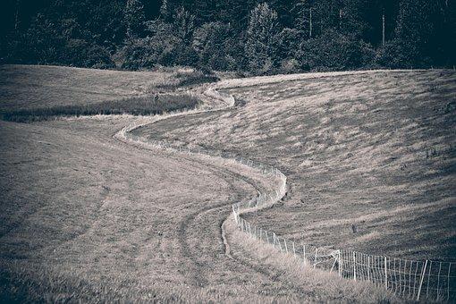 Landscape, Field, Nature, Fields, Arable, Meadow