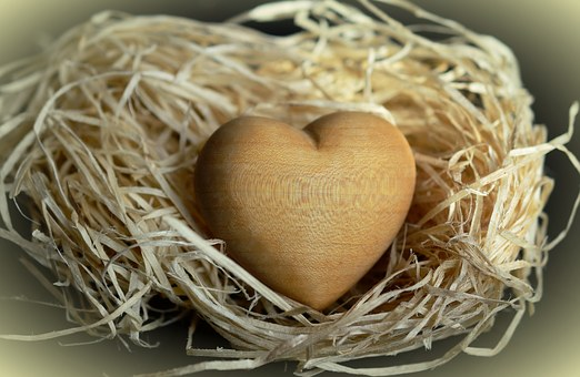 Wood, Wood Wool, Natural Materials, Light Brown