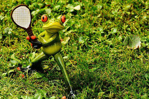 Tennis, Frog, Leisure, Sporty, Cute, Fun, Sport, Funny