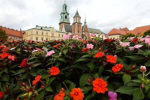 Kraków, Wawel, Monument, Architecture, Flowers