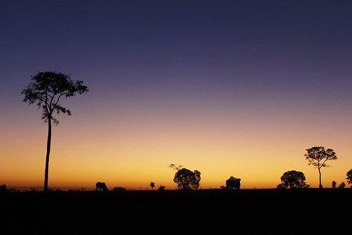 Eventide, Horizon, Twilight, Landscape, Beauty, Dusk