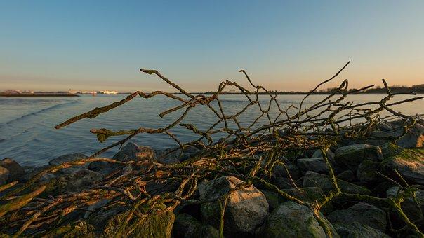Hamburg, Blankenese, Elbe, Elbe Beach, Water, River