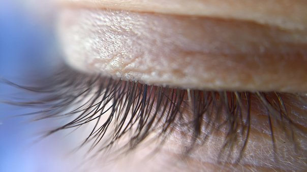 Eye, Lid, Eye-lid, Eyelashes, Close Up, Eye Macro