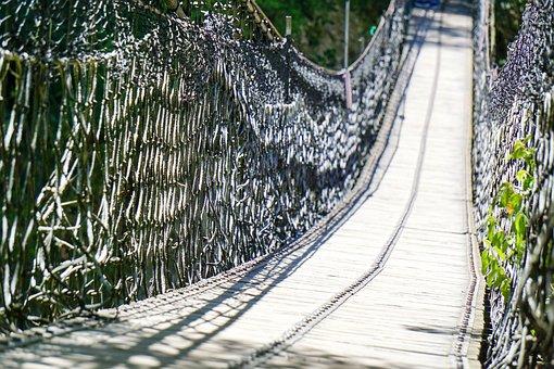 Bridge, Hang, Hanging, Path, Jungle, Walk, Rope