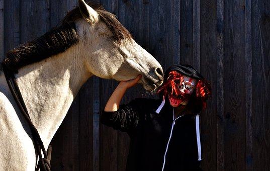 Halloween, Bloody, Horror Clown, Creepy, Horse, Pony