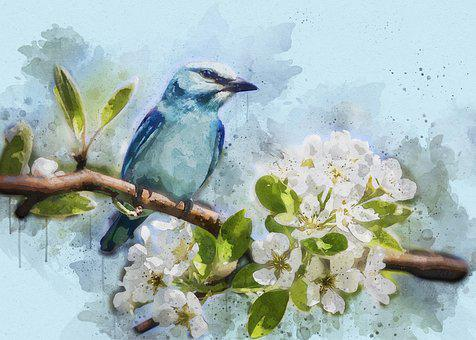 Bird, Blue, Feathered, Mood, Close, Nature, Tree