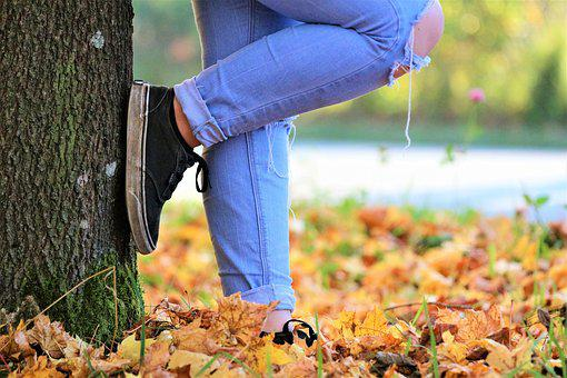 Shoes, Autumn, Nature, Forest, Human, Leaves, Walk