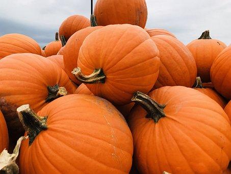 Pumpkin, Fall, Autumn, Orange, October, Halloween