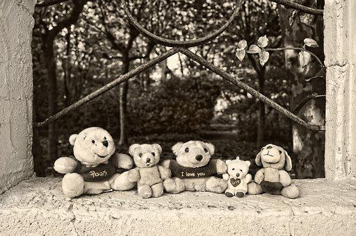 Teddy Bear, Bear, Stuffed Animal, Toy, Fluffy, Furry