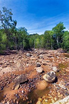 Creek, Creekbed, Magnetic Island Creek, Mangroves