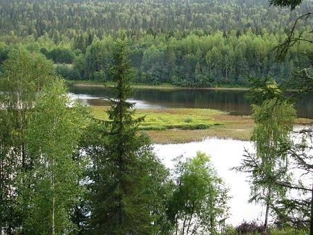 River, Beach, River Bank, Nature, Sky, Greens, Stroll