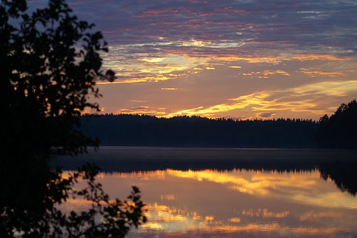 Sunset, Shrubs, Summer, Swedish