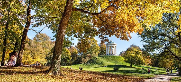 Autumn, Leaves, Colorful, Golden Autumn, Nature