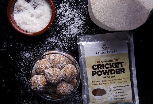 Primal Future, Cricket Powder, Cricket Flour