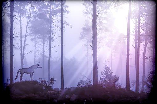 Unicorn, Fairy Tales, Mythical Creatures, Horse