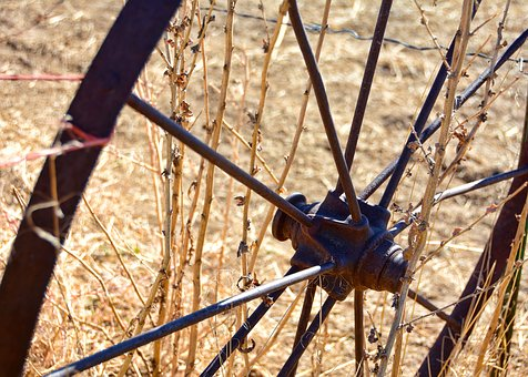 Wheel, Rustic, Fall, Autumn, Vintage, Old, Antique