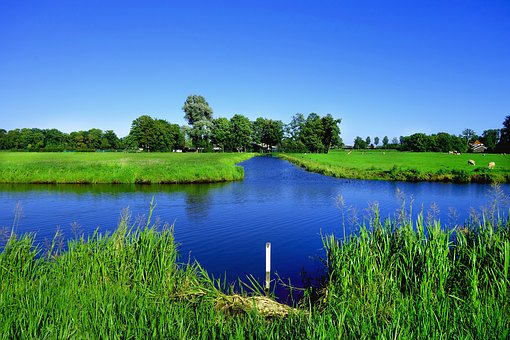 Water, Waterway, Field, Grass, Countryside, Rural