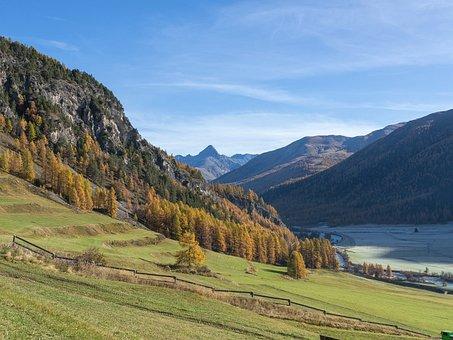 Switzerland, Engadin, Autumn, Larch