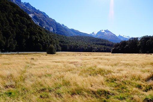 Nz, New Zealand