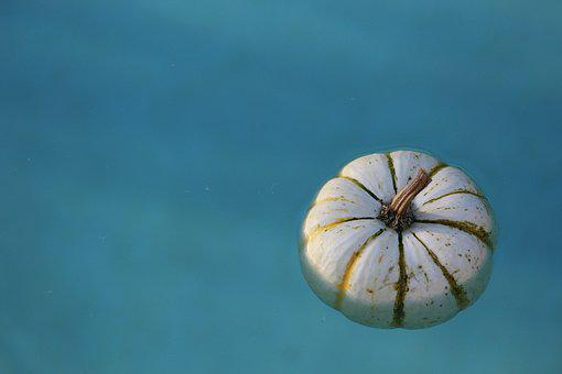 Water, Pumpkin, Wet, Blue, White, Colors, Autumn