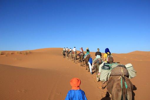 Camels, Desert, Africa, Sahara, Turban
