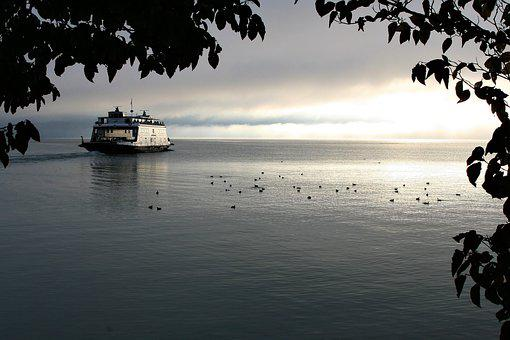 Ferry, Cruise, Swimming, Shipping, Tourism, Morning