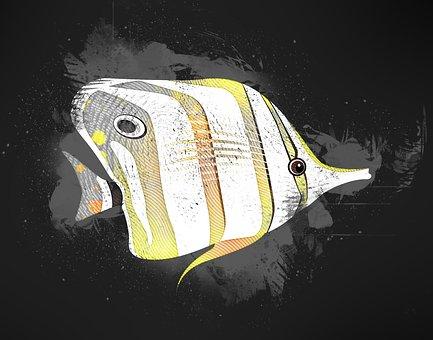 Fish, Yellow, Animals, Fishing, Black, Abstract