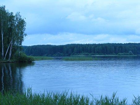 Landscape, Summer, Nature, Forest, Spaces, Grass, Sky