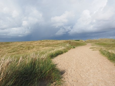 Dune Landscape, Trail, Sylt, Elbow, Dunes, Marram Grass