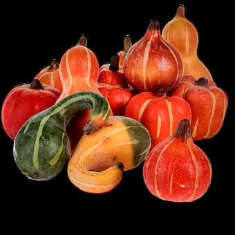 Pumpkin, Fall, Autumn, Harvest, Thanksgiving, Season