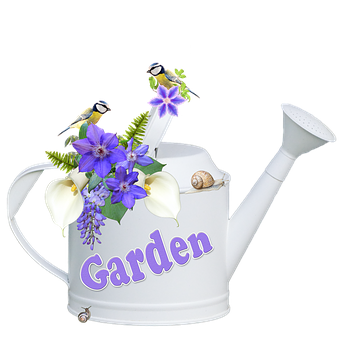 Watering Can, Flowers, Clematis, Callas, Wisteria