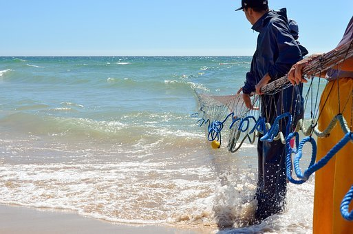Fisherman, Network, Fishing, Fishing Net, Coast, Ocean
