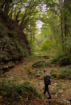 Excursion, Forest, Val Borago, Valle, Trail, E5