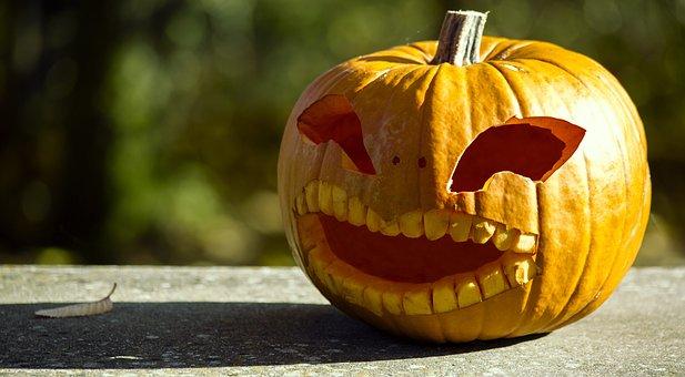 Halloween, Pumpkin, Halloweenkuerbis, Autumn, Deco
