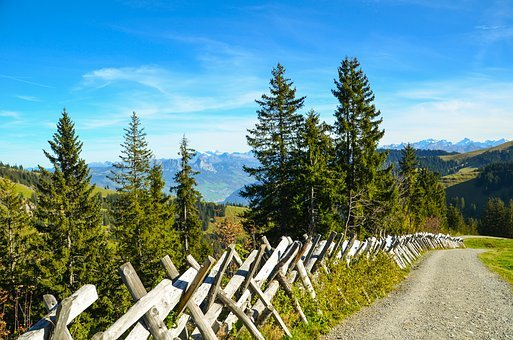 Hiking, Trail, Distant View, Away, Fence, Alpine
